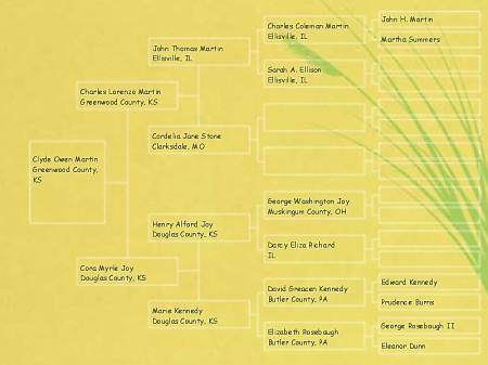 Clyde Owen Martin family tree